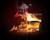 image of absinthe  - Image of glass of burning yellow absinthe - JPG