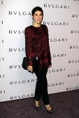 LOS ANGELES - FEB 19:  Marisa Tomei arrives at the BVLGARI Celebrates Elizabeth Taylor's Jewelry Col