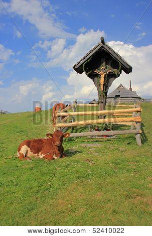 Wooden Cross And Cow, Velika Planina, Slovenia