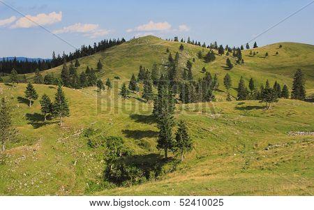 Velika Planina Mountain Pastureland, Slovenia