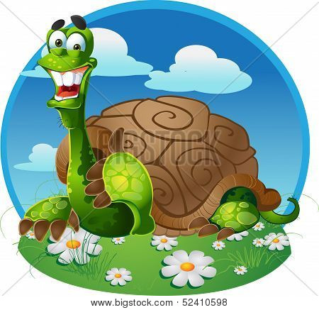 vector turtle on color background