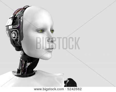 The Face Of A Robot Woman.