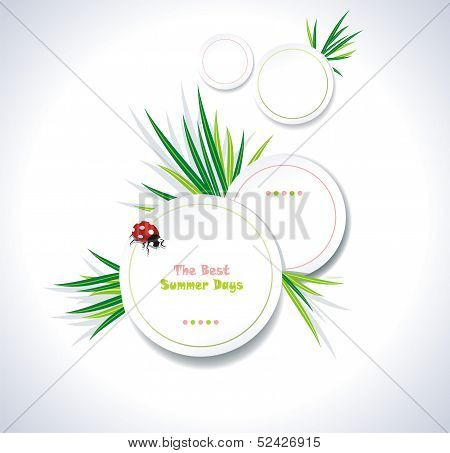 Clean summer stickers with grass