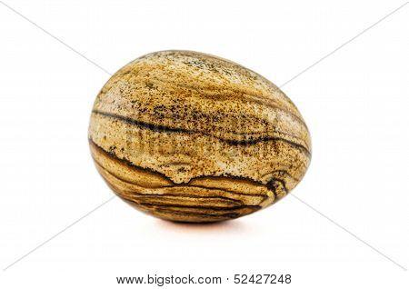 Picture Jasper Egg