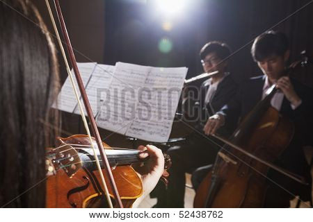 Violinist and other musicians playing