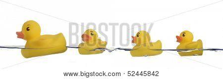 rubber ducks family