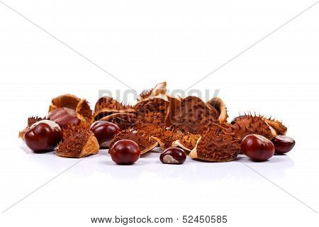Chestnuts On White
