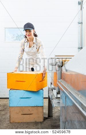 Young female beekeeper with stacked honeycomb boxes working in beekeeping factory