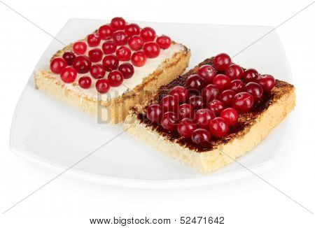 Delicious toast with cranberries isolated on white