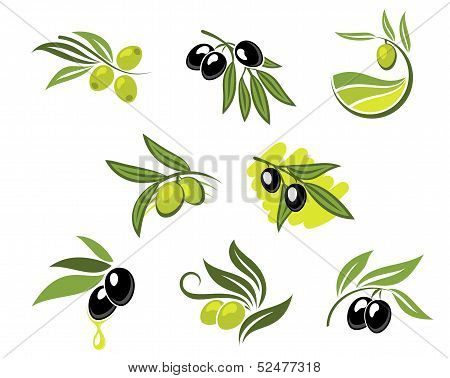 Green And Black Olives Set
