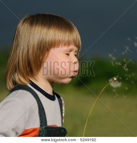 The Boy And A Dandelion