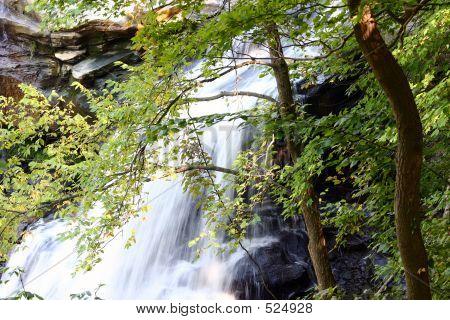 Brandywine Falls Ii