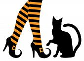 stock photo of stocking-foot  - witches feet in striped socks and shoes and a black cat - JPG
