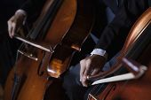 stock photo of cello  - Close - JPG