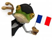 picture of french beret  - French frog  - JPG