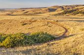 sunrise illuminates a trail through rolling prairie at foothills of Rocky Mountains in Colorado - So
