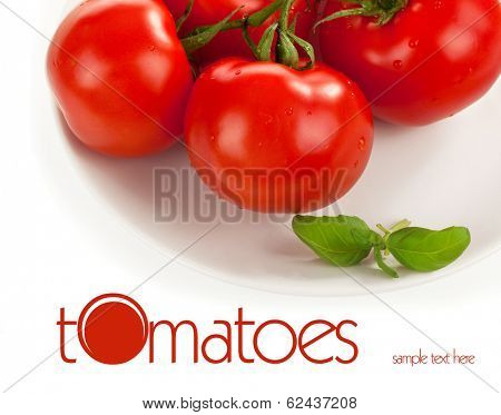 fresh tomatoes with green leaves isolated on white background
