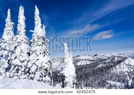 Winter Landscape In Whitefish, Montana