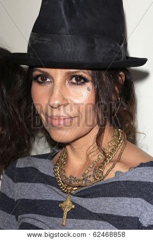 WEST HOLLYWOOD - MAR 15: Linda Perry at An Evening with Women kick-off concert presented by the L.A. Gay & Lesbian Center at The Roxy Theater on March 15, 2014 in West Hollywood, CA