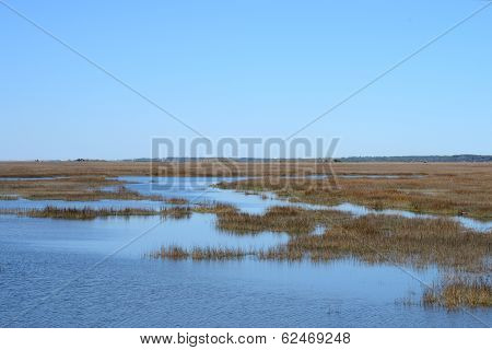 Coastal Wetlands Near A Southern Coastal Island