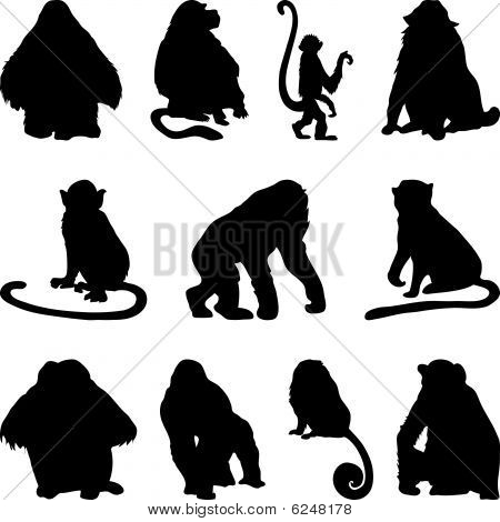 apes silhouettes set