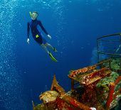 stock photo of bottomless  - Free diver exploring the ship wreck in tropical sea - JPG