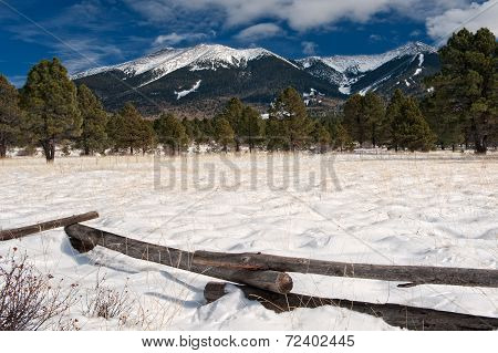 Snowy Meadow And Mountains