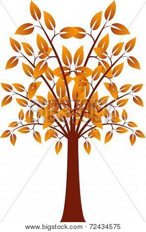 Orange Leaf Tree, Fall Tree, Tree Vector