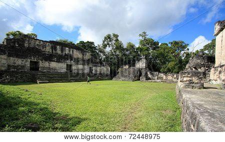 Mayan ruins, Tikal National Park, Guatemala