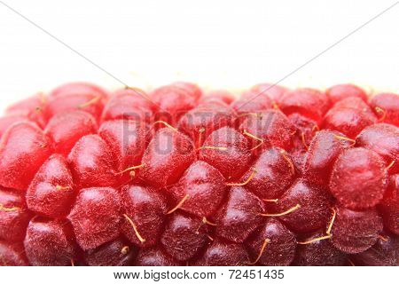 Raspberry Detail Isolated