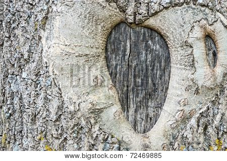 Abstract Symbol Of Love And Fidelity On A Tree