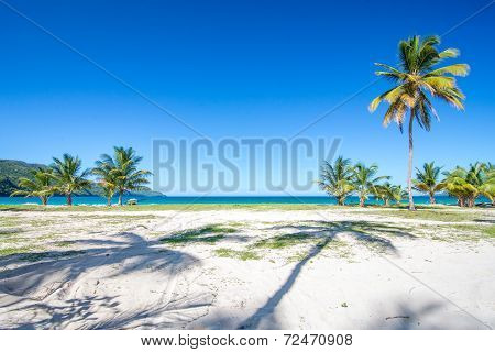 beautiful tropical beach in Caribbean
