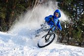pic of snow forest  - Cyclist riding on a mountain bike in the snow in the winter forest - JPG
