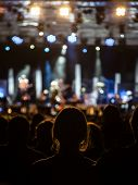 image of singer  - Silhouette of people at a concert focused on a girl in the center - JPG