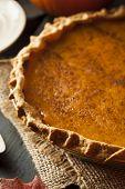 picture of pumpkin pie  - Homemade Pumpkin Pie for Thanksigiving Ready to Eat - JPG