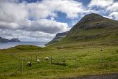image of faroe islands  - Landscape of part of the Faroe Islands near Klaksvik in the North Atlantic - JPG