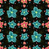pic of gladiolus  - Illustration of seamless floral pattern with blue and pink gladioluses on black background - JPG