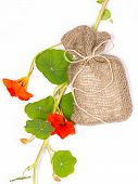 stock photo of nasturtium  - beige canvas bag with a gift and fresh flowers orange nasturtiums on a white background - JPG