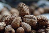 stock photo of walnut  - Pile of walnuts - JPG