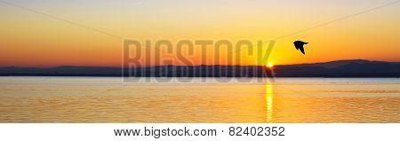 Panoramic sunset sun on the sea