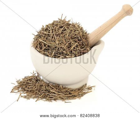 Ephedra herb in a stone mortar with pestle over white background. Ma huang.