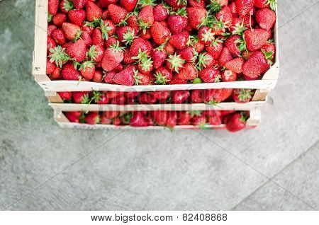 Home Grown Strawberries