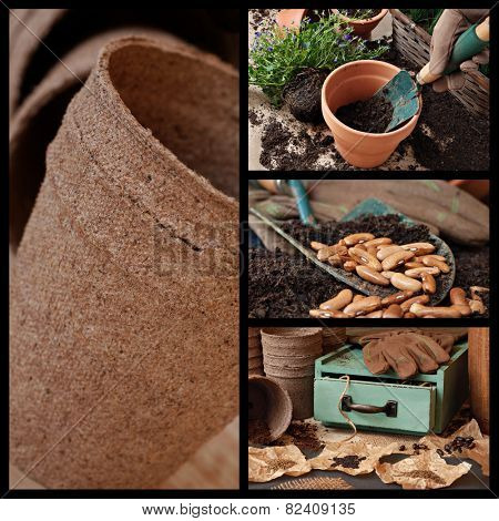 Gardening collage includes images of flower pots, garden supplies and various seeds with vintage wooden box.