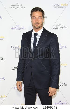 LOS ANGELES - JAN 8: Daniel Lissing at the TCA Winter 2015 Event For Hallmark Channel and Hallmark Movies & Mysteries at Tournament House on January 8, 2015 in Pasadena, CA