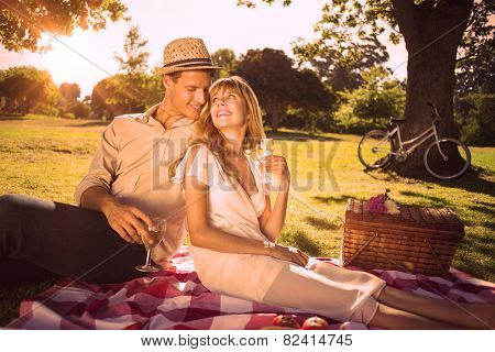 Cute couple drinking white wine on a picnic smiling at each other on a sunny day
