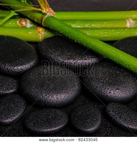 Beautiful Spa Setting Of Zen Basalt Stones And Natural Bamboo Stems With Dew, Closeup