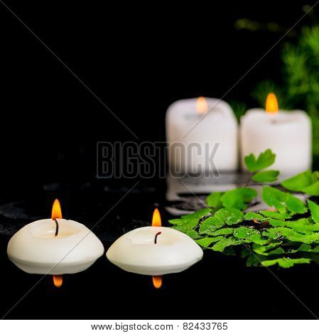 Spa Background Of Green Branch Asparagus, Fern And Candles On Zen Basalt Stones With Drops In Reflec