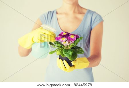 close up of woman holding pot with flower and spray bottle