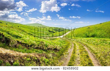 Path Through Highland Meadows
