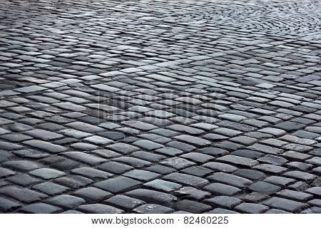 Fragment Of Cobbled Road